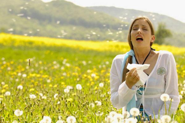 Алергии од полен – Мака на третина од населението